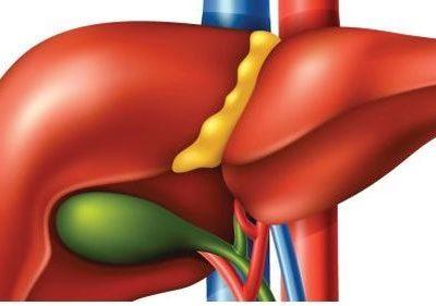 immunoterapia raka wątroby