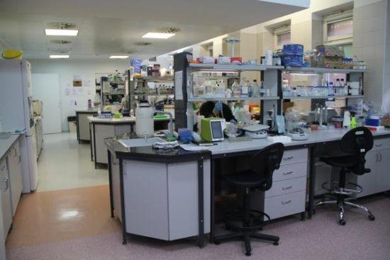 pracownia immunologii WUM