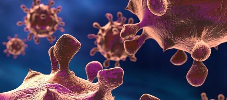wirusy onkolityczne immunoterapia raka