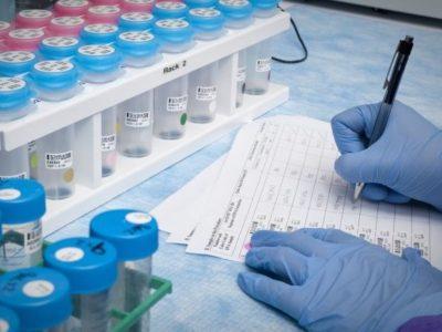 dostęp i refundacja immunoterapii